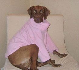 Vizlarama-Belle looking cute in her Pink jumper