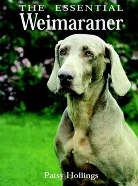 The Essential Weimaraner by Patsy Hollings 2 - £22.00