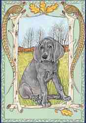 Pipsqueak Weimaraner Birthday Card 2 - £1.50