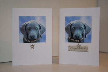 Weimaraner Puppy Card 3 - £3.20