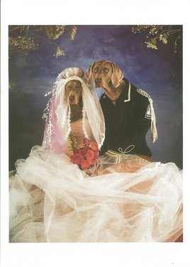 William Wegman Happily Ever After Wedding Day card - Single 1 - £2.00