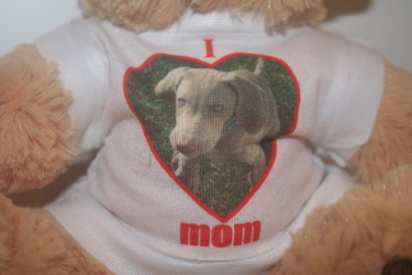 Teddy Bear withI Love Mom T-shirt 3 - £7.99
