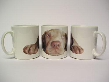 Mug - Darcy 1 - £8.50