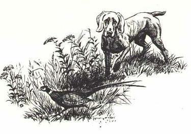 Print by Raymond Pease 2 - £15.00