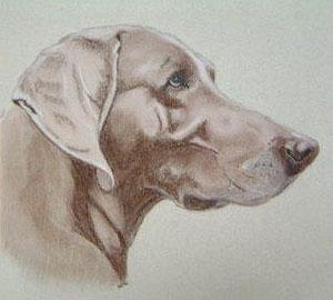 Original Pastel Portrait by Sandy Walden 2 - £59.00