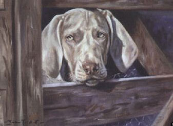 The Gatekeeper by John Trickett 2 - £74.50